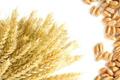 Teljes kiőrlésű gabona (búza, búzakorpa, búzacsíra)