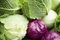 Sötétzöld levelű zöldségek (spenót, kelkáposzta)